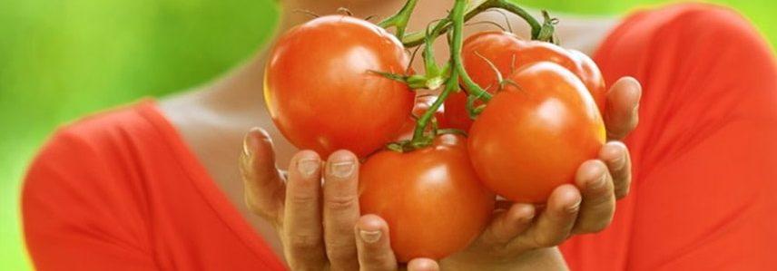 Белковый томатный суп с базиликом