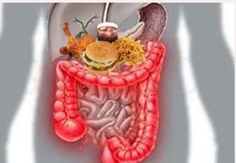 Зашлакованный организм на диете Гербал